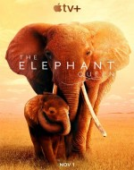 The Elephant Queen (2019) online